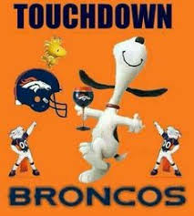 Go Broncos Meme - it was a great season broncos has lots to be proud of