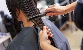 haircut coupons ta florida sarasota color highlights deals in sarasota fl groupon