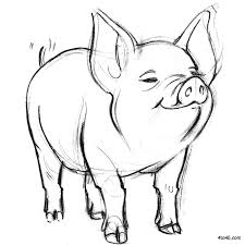 pig coloring free download
