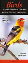 birds of southern california a guide to common u0026 notable species