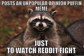 Puffin Meme - evil plotting raccoon memes quickmeme