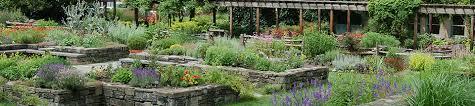 pounder vegetable garden cornell botanic gardens
