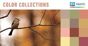 our other paint color collections ppgpaints com