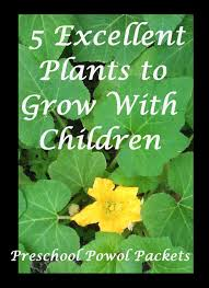 5 excellent plants to grow with kids u0026 an object lesson