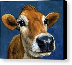 Cow Print Kitchen Curtains Marvelous Cow Print Kitchen Curtains Ideas With Cow Canvas Prints