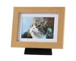 cat caskets prestwood pet crematorium