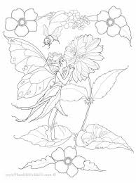 65 fairies images draw coloring books