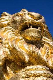 gold lion statues gold lion statues on blue isolated stock photo image of blue