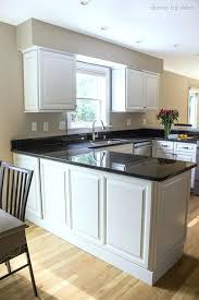refacing kitchen cabinets ideas kitchen cabinet refacing ideas snaphaven com