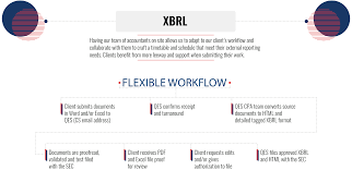 Mutual Fund Accountant Xbrl Filing Services Sec Xbrl Compliance Ny Quality Edgar