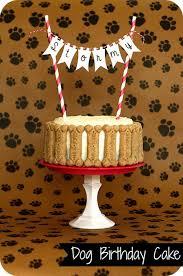 how to make a dog birthday cake doulacindy com doulacindy com