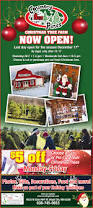 country pines christmas trees ad from 2017 11 19 ads