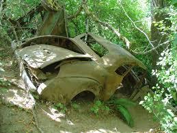 free images tree forest vehicle jungle park abandoned