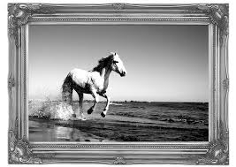 camargue white horse wallpapers camargue white horse wild life art mural printed wall mural