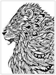 detailed coloring pages of dragons printable dragon coloring pages amazing detailed coloring pages