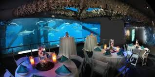 corpus christi wedding venues compare prices for top 803 wedding venues in corpus christi tx