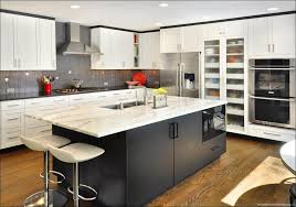 glass panel kitchen cabinet doors granite countertop frosted