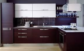Minimalist Kitchen Cabinets Small Minimalist Kitchen With Rosewood Modern Kitchen Cabinets