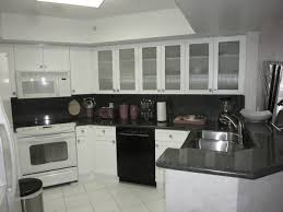 frosted white shaker kitchen cabinets white shaker style kitchen cabinets contemporary miami