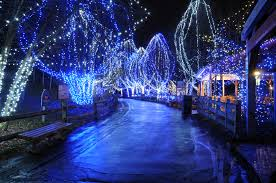 Detroit Zoo Wild Lights Columbus Zoo Christmas Lights Christmas Lights Decoration