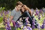 The Twilight Saga: Breaking Dawn – Part 2 | Lyles Movie Files