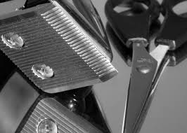 barbershop supplies and barbering equipment barber supplies