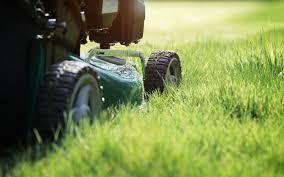 cura giardino e gardening la cura ecologica giardino