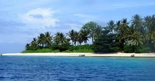 home to some of the rarest marine life mabul island sabah