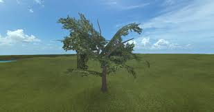 what s the best way to create high quality trees design support