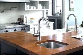 C Kitchen Sink Hansgrohe Talis Kitchen Faucet Shn Me