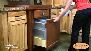 Recycle Kitchen Cabinets by Waste And Recycle Bins Pull Out Rack Showplace Kitchen