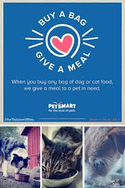 petsmart thanksgiving hours 37 best adopt rescue foster images on pinterest animal rescue