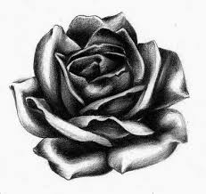 rose practice tattoo design by larcdear on deviantart
