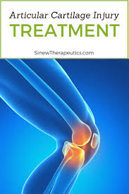 Ankle Anatomy Ligaments The 25 Best Ligaments Of The Ankle Ideas On Pinterest Bones Of