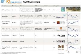 resource no guarantee of lithium value add business news
