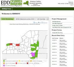 edd maps bmsb update 1st 2nd feeding on pear the jentsch lab