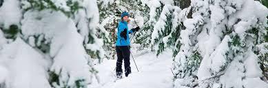 cross country skiing michigan