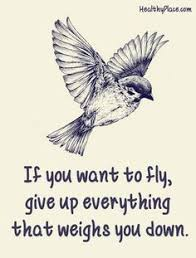 quotes about birds 2017 inspirational quotes quotes brainjobs us