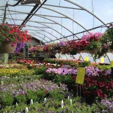 St Albert Botanical Gardens St Albert Greenhouses Nurseries Gardening Rr 2 Stn St