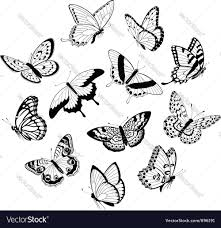 flying black white butterflies royalty free vector image