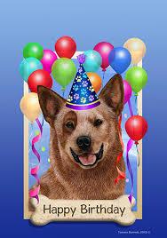 australian shepherd happy birthday cattle dog red tamara burnett happy birthday garden flag