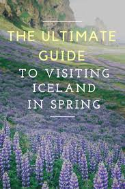 The Ultimate Guide To Spring by The Ultimate Guide To Visiting Iceland In Spring Dreaming And