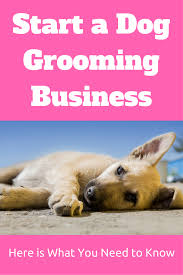 How To Start A Decorating Business From Home Home Business Ideas For Dog Lovers Business Dog And People