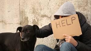 Seeking Cap 1 Poor With Cardboard Sign Seeking Help Stock Footage