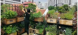 Garden Roof Ideas 1 Edible Roof Garden Jpg