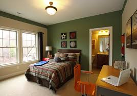 interior wall colour light green and olive green home combo
