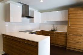 Wolf Kitchen Cabinets Zebrawood Kitchen Remodel In Rochester Ny Concept Ii