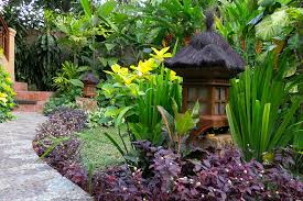 Garden Flowers Ideas Small Tropical Garden Ideas Planted With Various Of Tropical