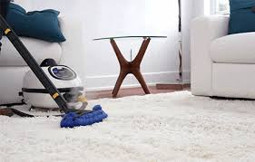 Can You Steam Clean Vertical Blinds Dupray Steam Cleaners Clean Anything Around Your Home Or Business