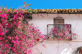 detail traditional old spanish house spain editorial photography